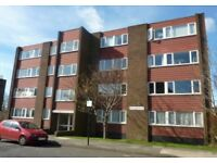 Flatmate wanted in bright, spacious 2 bed apartment by West Jesmond metro!