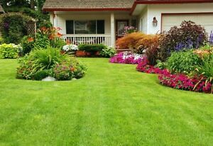 Lawn Care!! Cut Mow Trim Weed Control TODAY!