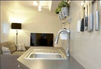 >>>LUXURY 1BR+1B W/D, 1prkn in downtown LESLIEVILLE>>>
