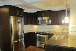 Port Coquitlam Luxury 2 bed 2 bath Apartment (3 year old Buildin