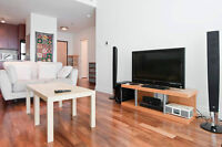 Beautiful Fully furnished condo in the Plateau