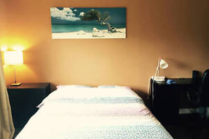 A fully-Furnished room for rent - $850
