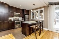 NDG/Mtl West fully renovated lower duplex 2 bedroom