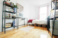 Bright, new sublet in prime Plateau location on St-Laurent