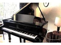 Petrof V midi grand piano in immaculate showroom condition.