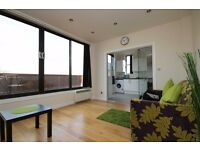 Stunning modern two bedroom apartment