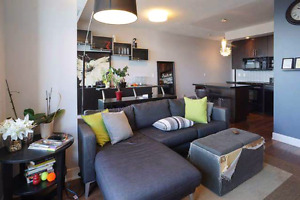 For march: beautiful furnished room in downtown condo
