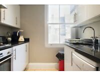 Newly renovated and fully furnished spacious and charming studio & 2 double bedroom flat