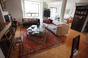 Office desk, bed, Dining table, couches, persian rug, shelves,