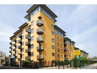double room to let in modern gated apartment - sharing with one male professional