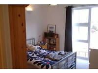 Spacious, airy double bedroom for single professional