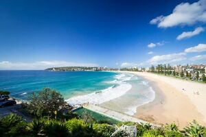 Room with ocean views Queens cliff Manly Queenscliff Manly Area Preview