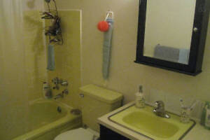 One-month (May 14- June 14) sublet of furnished unit (Oak str. a