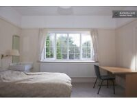 Great room in Charminster ideal for couple