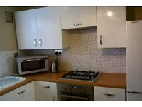 Modern, central Norwich flat available Monday to Thursday