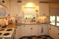 ~~Quartz~~Granite~~kitchen countertop starting from $1599!