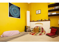 Tranquali & Sunny, clean room for female student (45 min from city)
