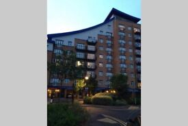 2 bedroom Furnished apartment to rent at Luscinia View, Napier Road, Reading, RG1.