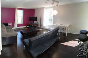 ALL INCLUSIVE- Plateau Large 1 BR metro Laurier