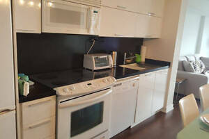 Fully furnished 1br+1 in upscale downtown building