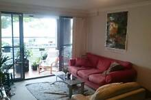Room available in large appartment in Redfern Redfern Inner Sydney Preview