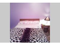 Large Double room Furnished
