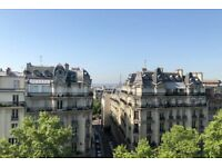 Amazing apartment- balconeys-view on Eiffel tour