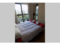 Female required: Double room in Kings cross luxury apartment £150 pw including all bills, no deposit