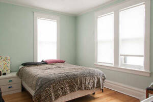 ALL INCLUSIVE furnished room in the Glebe - available November 1