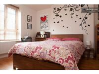 Large Double Bedroom in Upper Clapton, very close to Clapton Station, Stoke Newington etc.
