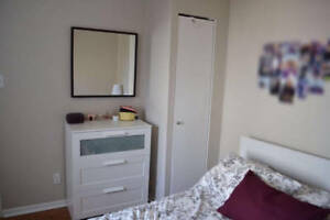 3 1/2 DOWNTOWN Montreal Furnished and All Included 1 month lease