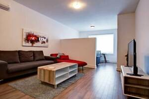 LUXURIOUS CONDO / APARTMENT, AIR-CONDITIONED, ALL EQUIPPED