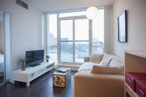 Furnished condo for rent_ideal relocation for professionals