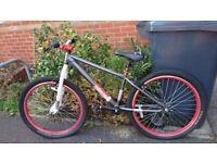 "X-Rated Bike (26"")"