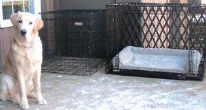 KONG Home Kennel (Extra Large)