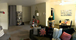Room for Rent in 2 Bedroom Apt. - Available Nov. 1 (earliest)