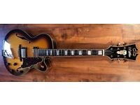 D'Angelico Jazz Guitar arch top hollow body guitar Gibson Ibanez Fender the guitar is brand new