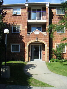 Beautiful 3 Bedroom Apartment in Kingston's West End