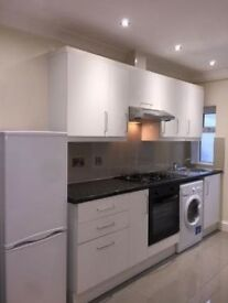 Newly Refurbished Ground Floor Studio Flat