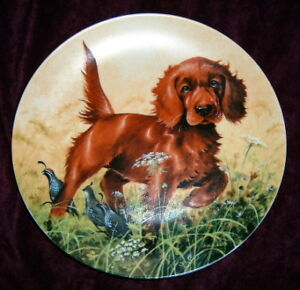 """""""Missing The Point Irish Setter"""" Collector Plate"""