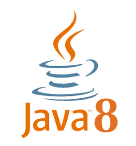 Junior Java Developer