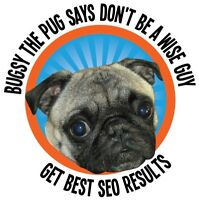 Free SEO or PPC Consultation