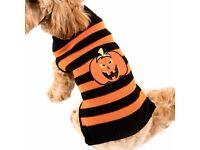 Halloween Doggy Jumper