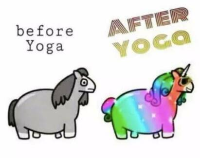 Diva's backyard yoga