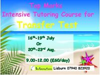 Lisburn/Ballyclare tutoring Transfer test AQE/GL, GCSE Science, Biology, Chemistry, Maths, English
