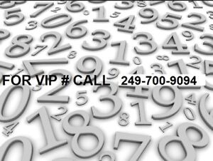 OAKVILLE VIP PHONE 416 NUMBERS FOR SALE