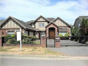 $4300 / 5br - 3600ft2 - Central Richmond 5 bedroom Home for Rent