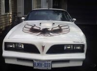 1977 Firebird Trans-Am