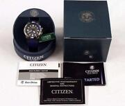 Citizen Eco-drive Dive