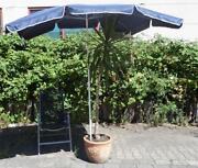 Sonnenschirm 150